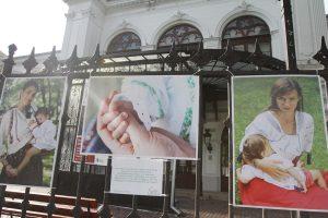 06-Expozitie-Alaptarea-e-Iubire-de-Cristina-Nichitus-Roncea-la-Muzeul-Bucuresti-Palatul-Sutu